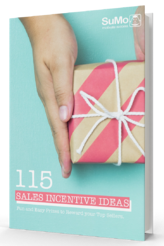 115 incentive ideas ebook_